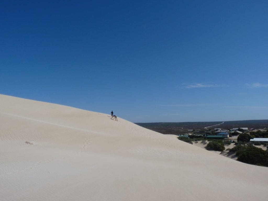 Fowlers Bay Sand Dunes South Australia
