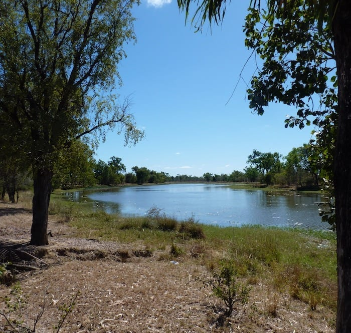 Billabong, Burke Developmental Road Channel Country Queensland