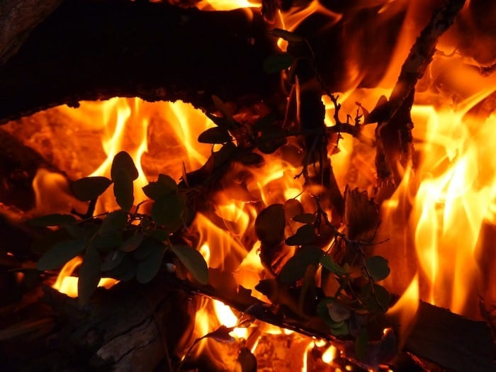 Campfire Remote Camping Welford National Park