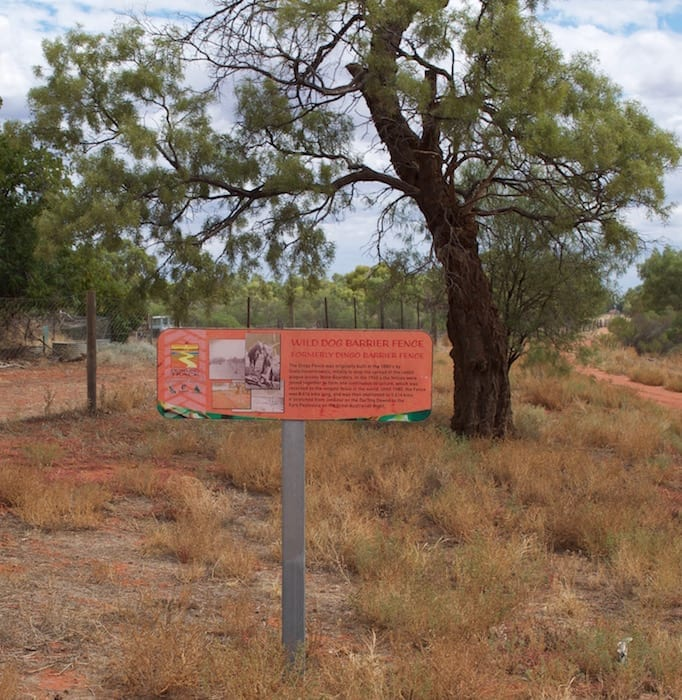 The Dog Fence, Hungerford - Camping Paroo River