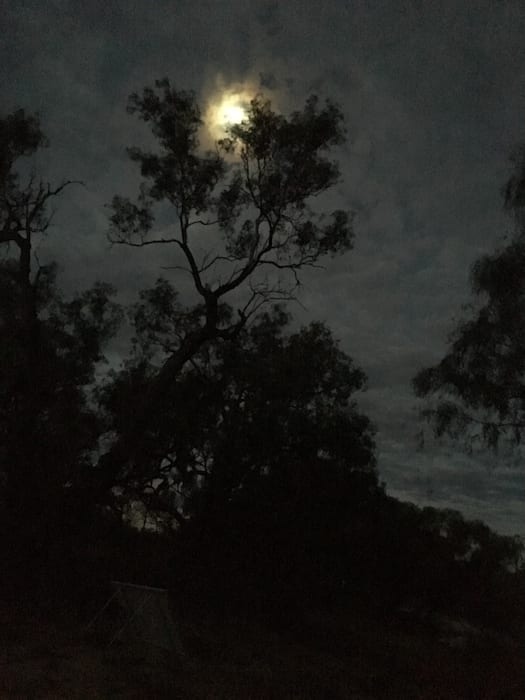 Moonlight, Camping Paroo River
