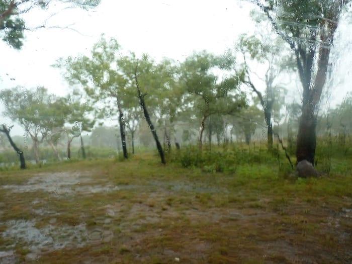 King Edward River Campground was awash. Kalumburu Road.
