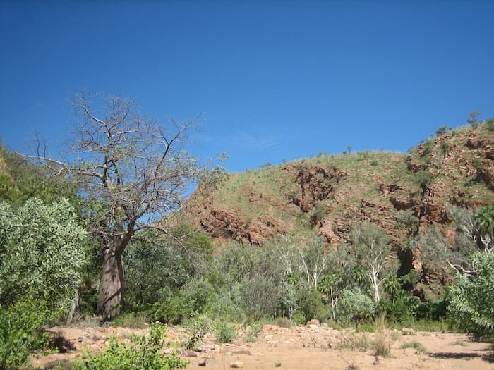 Moonshine Gorge, El Questro Station Kimberleys.