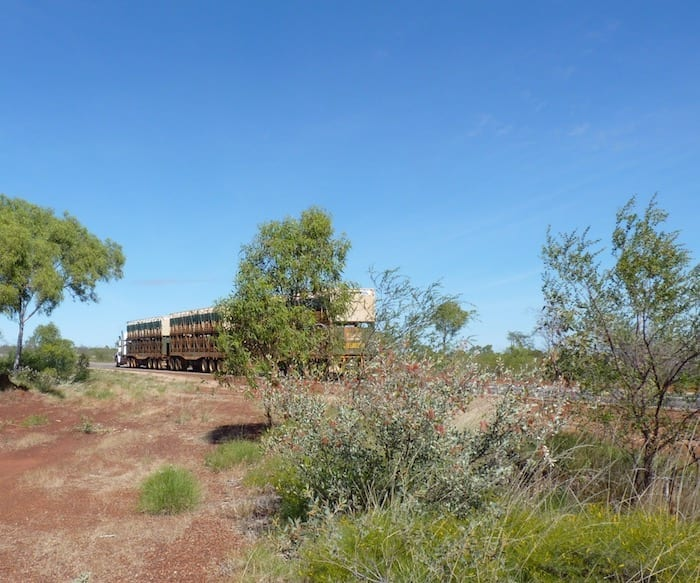 Road train on the way to the Devils Marbles.