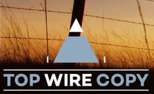 Top Wire Copy Logo