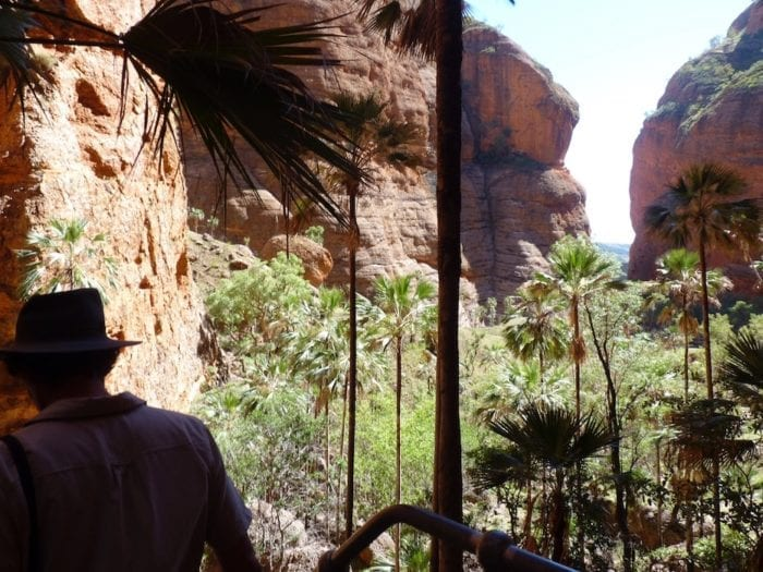 Mini Palms Gorge, Purnululu National Park.