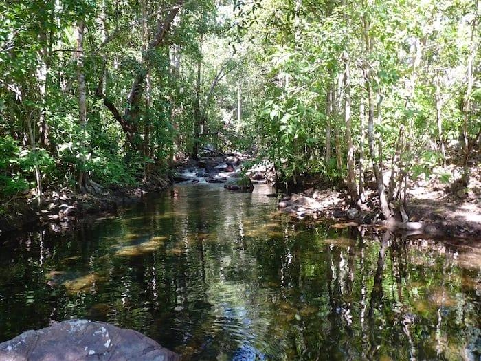 Creek crossing near Florence Falls, Litchfield National Park.