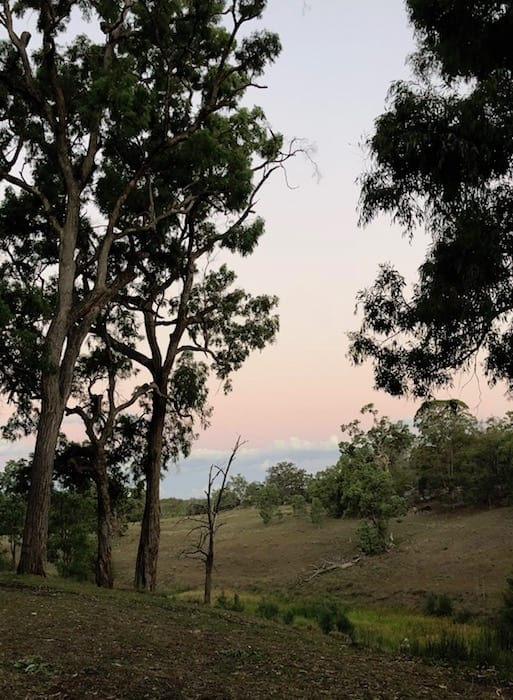 The colours of sunset in the east, Goulburn River National Park.
