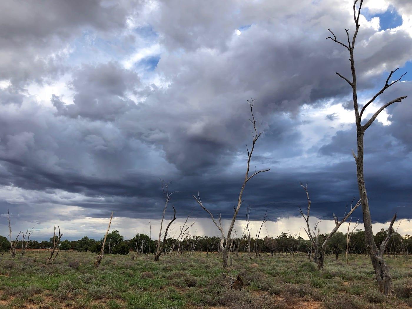 Storms brewing, Bollon QLD.
