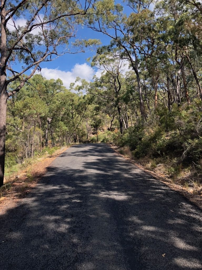 Climbing up into Blackdown Tableland National Park.