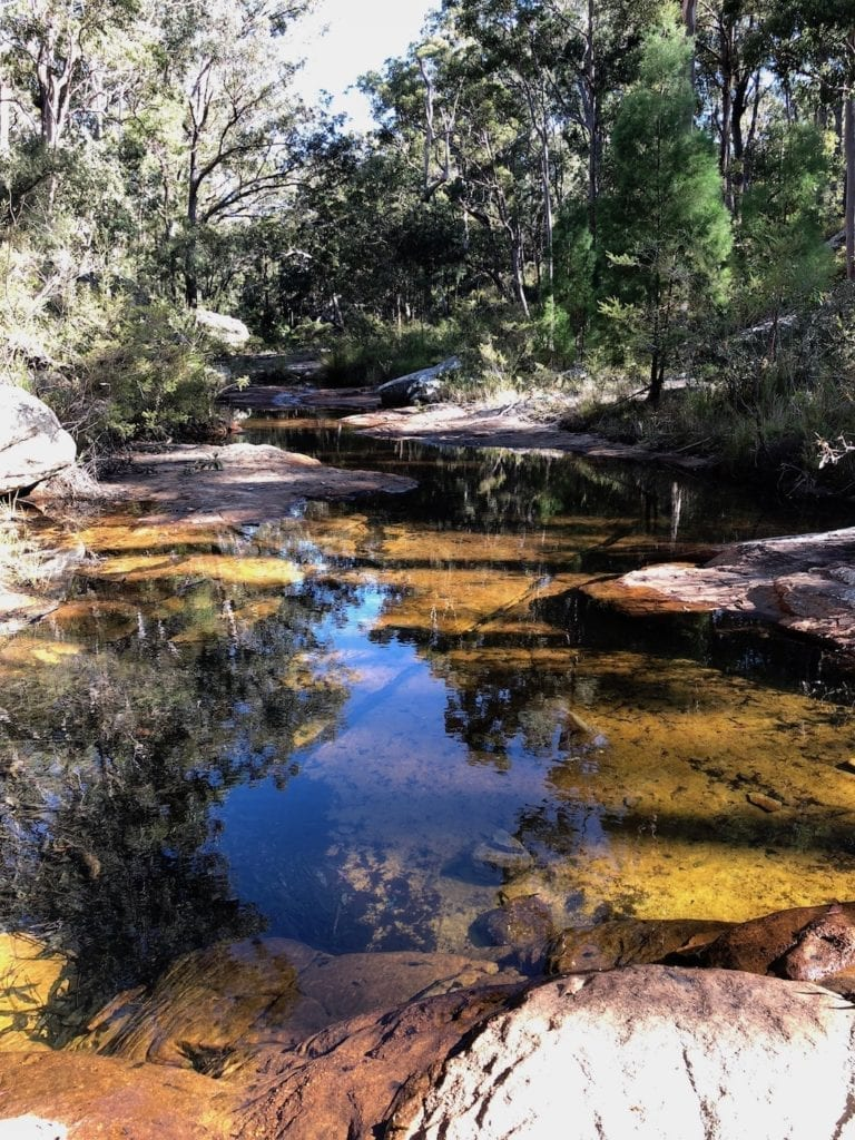 Mimosa Creek. Walks In Blackdown Tableland NP.