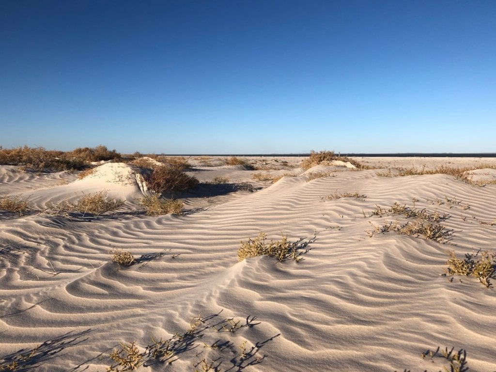 Ripples in the sand, Paruku (Lake Gregory).