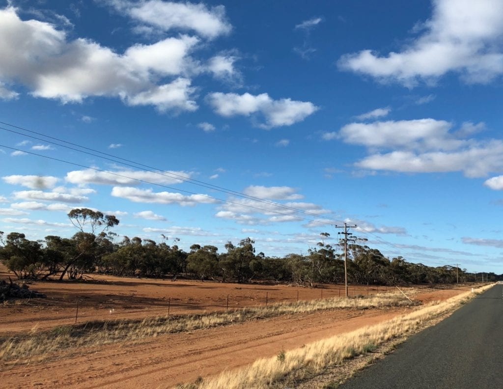 The paddock to the left is completely bare. NSW drought.