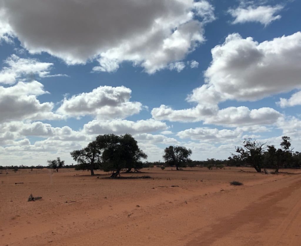 Not a blade of grass in sight. NSW drought.