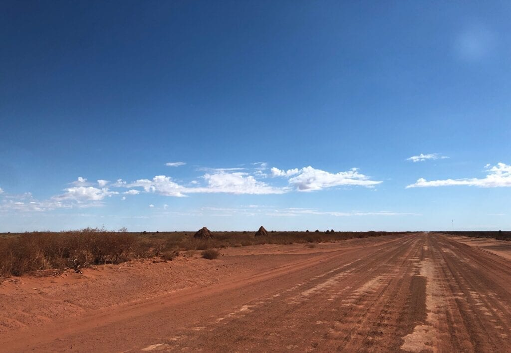 Endless plains of giant termite mounds, Tanami Road.