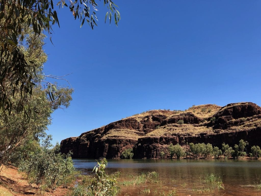 An unexpected pleasure on the edge of the desert. Kayaking Carawine Gorge.