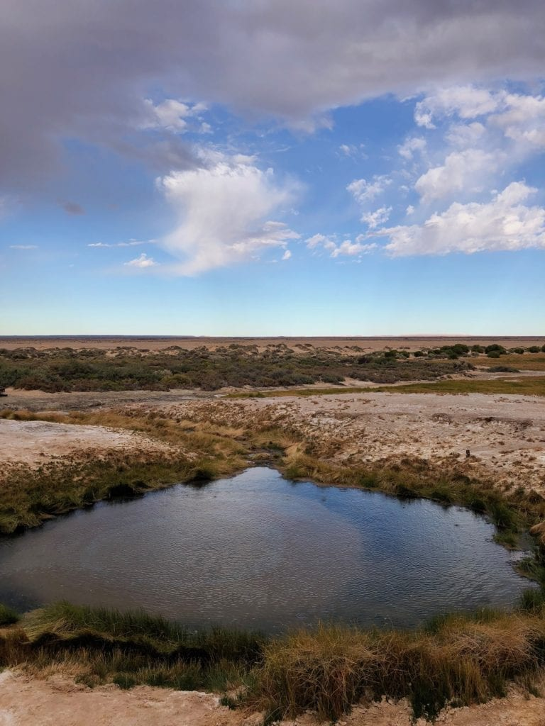 The Bubbler, near Old Ghan line. Salt Lakes and Water