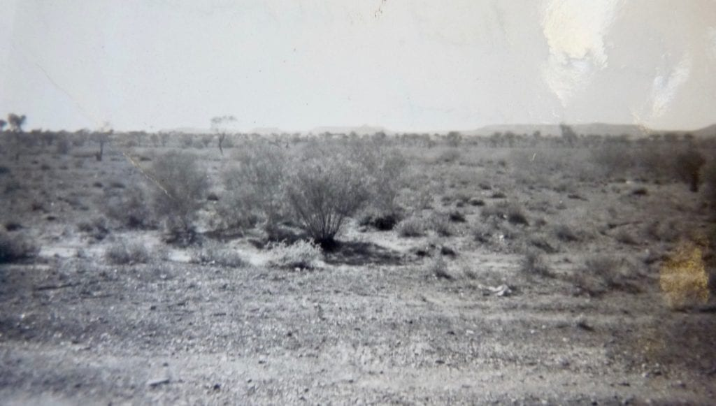 MacDonnell Range in the distance, from the south 1950. Finally clear of the endless sand dunes!