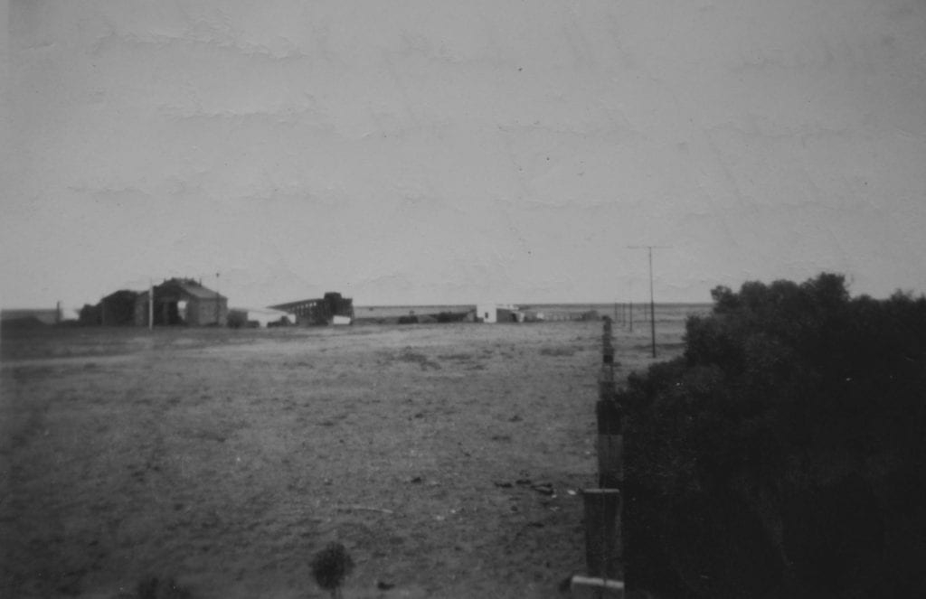 Maree, S.A. dusty, saltbush country. Big mob cattle on horizon. 1950. Quorn SA