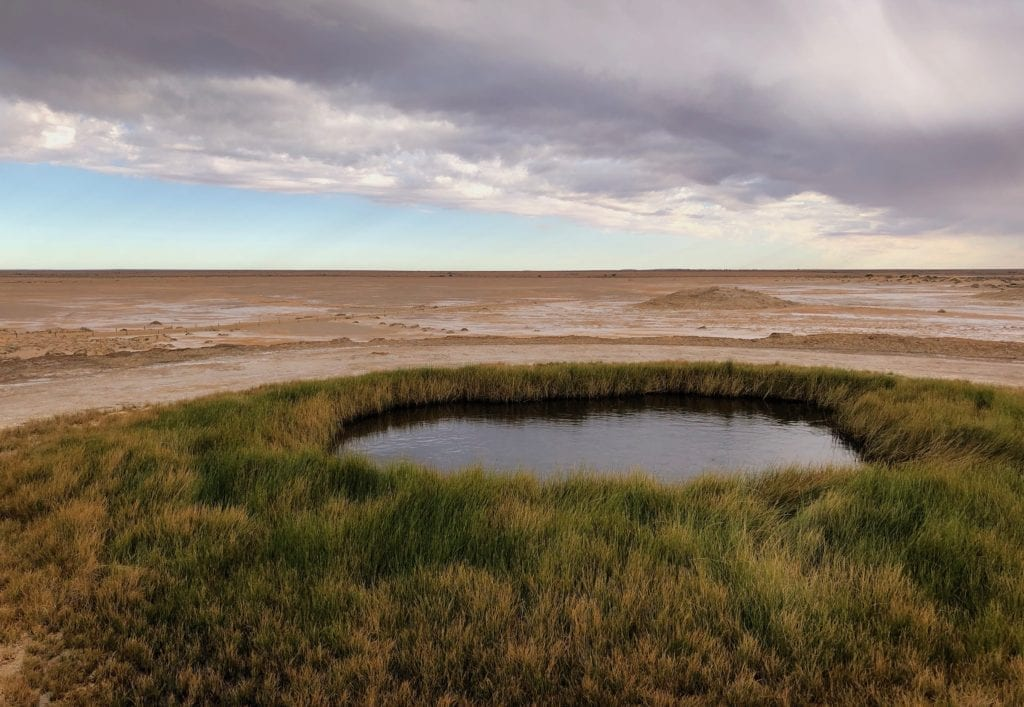 Blanche Cup Springs is a gentle flow of artesian water from deep underground.