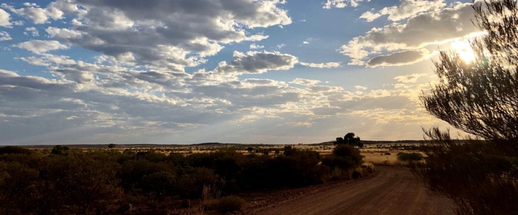 Late afternoon colours at Yarla-Kutjarra campground. Great Central Road, Great Victoria Desert.