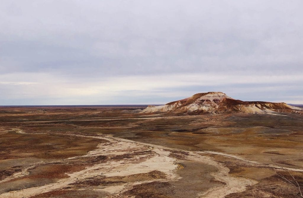 The landscape between this point and into the distance consists entirely of stones without any vegetation. Painted Desert SA.