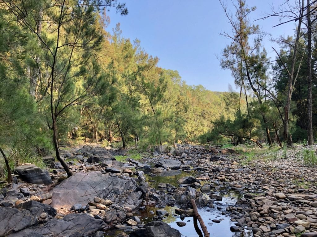 Deua River was low, but is still a beautiful place to camp. Bush camping near Canberra.