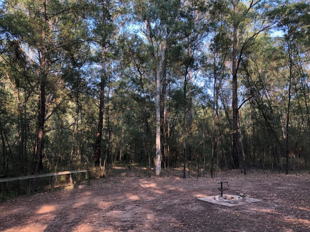 "The ""formal"" campground at Dry Creek Camping Area. Bush camping near Canberra."