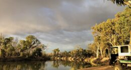 Camping On The Murray River SA | Katarapko Creek Section