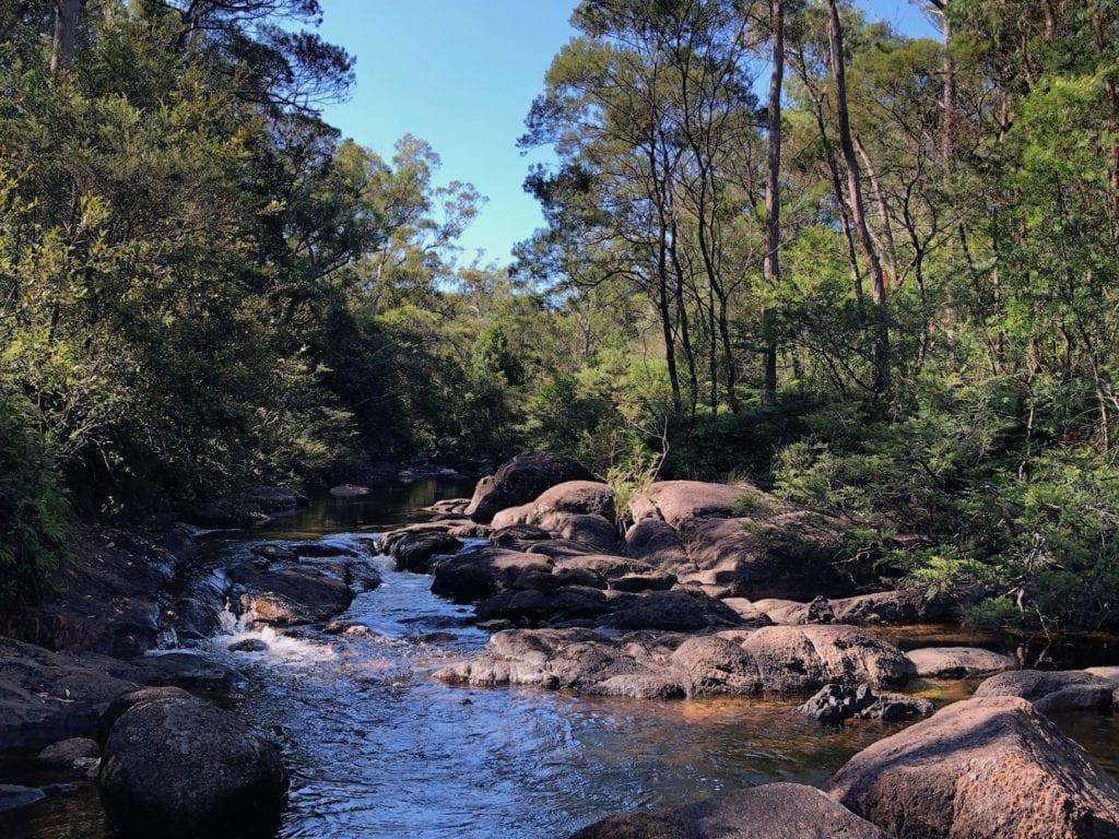 Little Dandahra Creek at Mulligans Hut campground, Gibraltar Range National Park.
