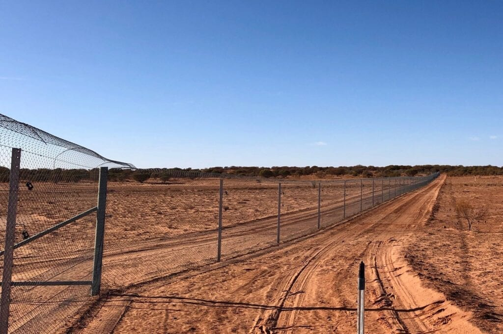 This fence is specially designed to keep predators out and to prevent small mammals like burrowing bettongs from digging under, thus providing access for predators to get in.