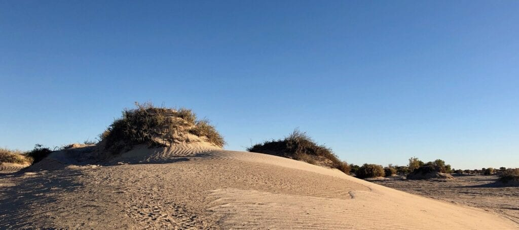 The strange sand mounds at Montecollina Bore, covered in fine wind-blown white sand.