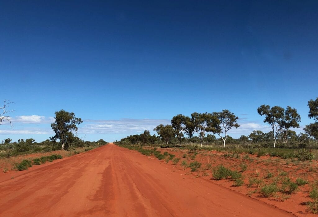 Classic colours of the Red Centre along the Sandover Highway. The greens and whites of the trees contrast with the deep reds of the sand.