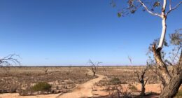 Lake Pinaroo, Sturt National Park | Was This Sturt's Inland Sea?