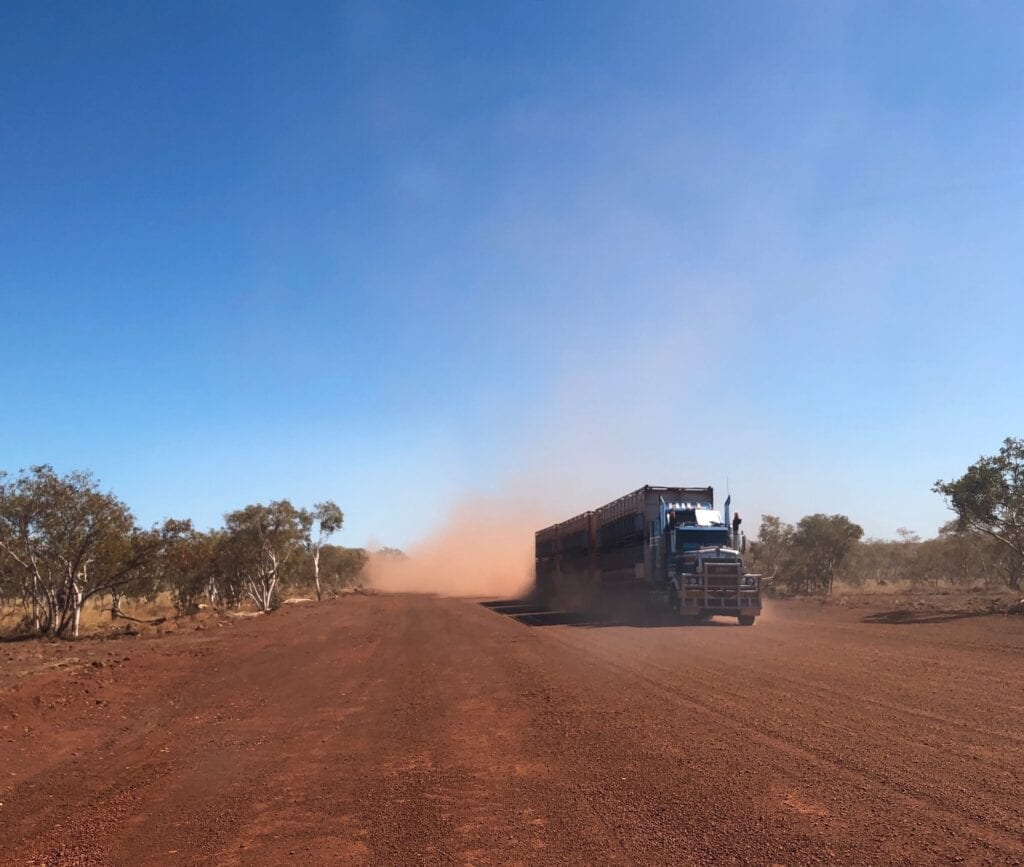 A triple roadtrain full of cattle, kicking up the dust on the Buntine Highway, west of Kalkarindji NT.