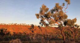 Judbarra / Gregory National Park | Exploring The 4WD Tracks