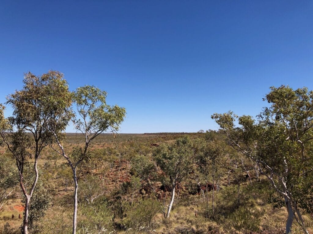 Looking NW across the vast plains from the top of an escarpment along the Broadarrow Track, Judbarra / Gregory National Park.